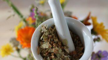 Bachblüten, Homöopathie & Schüßler Salze